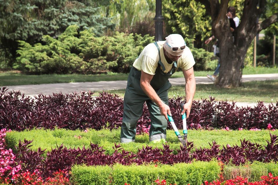 echte mannen werken in de tuin