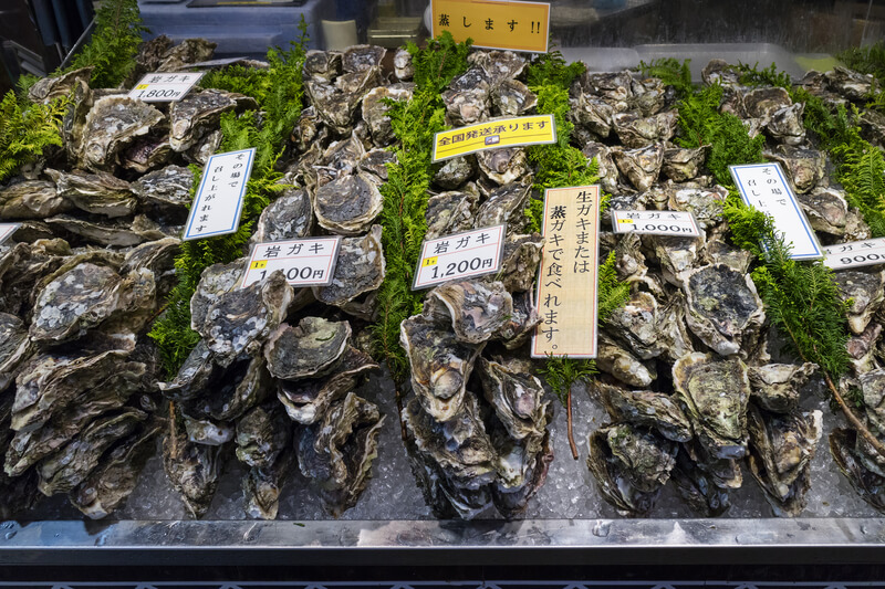 alles over oesters