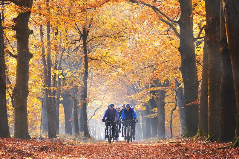 avontuurlijke vakantie in Nederland