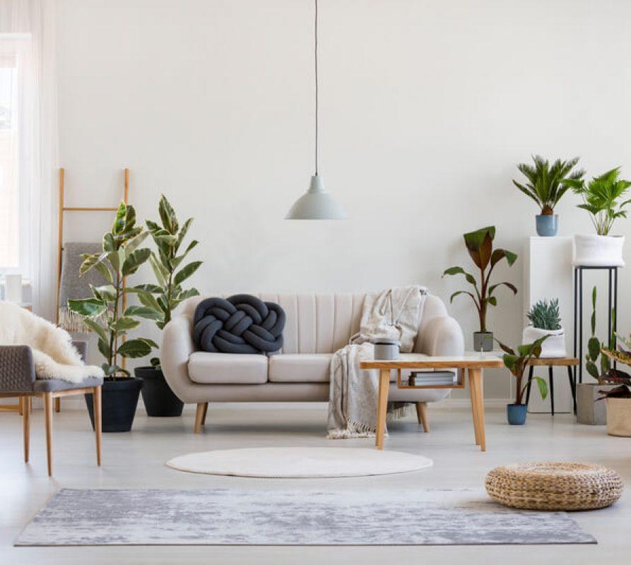 Met deze 3 manieren creëer je een natuurlijke sfeer in huis