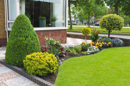 Hoe zorg je voor een gezonde tuin?